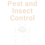 Proscape Pest and Insect Control